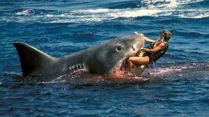 tiburon-pelicula